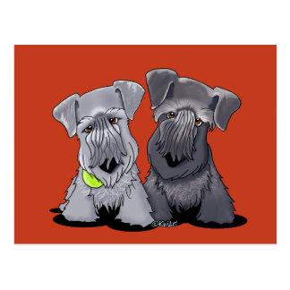 KiniArt Cesky Terriers Postcard