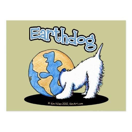 KiniArt Earthdog Westie Postcard