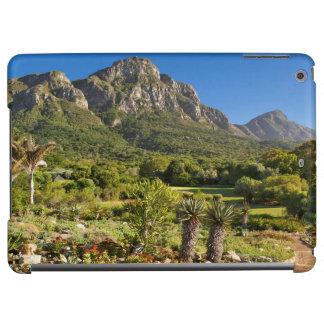 Kirstenbosch Botanic Gardens, Cape Town