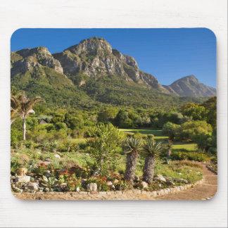 Kirstenbosch Botanic Gardens, Cape Town Mouse Mat