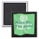 Kiss Me Im Irish Flag
