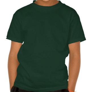 Kiss Me I'm Irish Lips with Irish Flag Tshirts