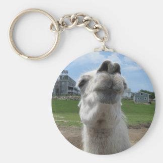 Kiss Me Llama Close-up Keychain