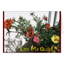 Kiss Me Quick Greeting Card