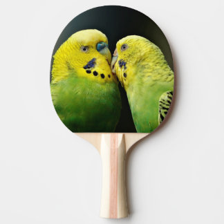 Kissing Budgie Parrot Bird Ping Pong Paddle