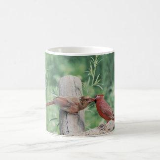Kissing cardinals coffee mug