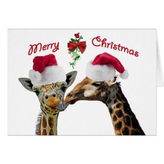 Kissing Christmas Giraffes Under Mistletoe Card