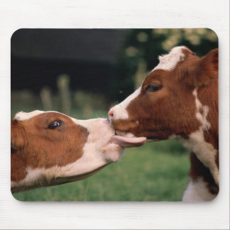 Kissing Cows Mouse Mat