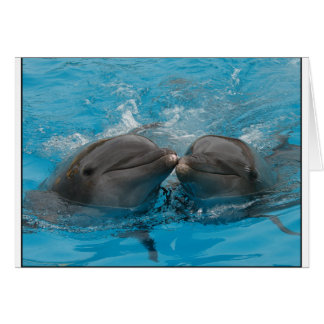 Kissing Dolphins Card