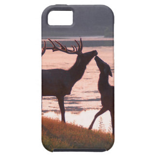 Kissing Elk iPhone 5 Case