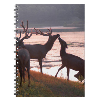 Kissing Elk Notebook
