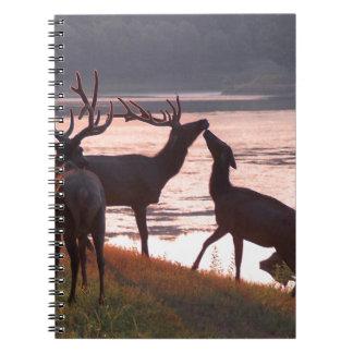 Kissing Elk Spiral Notebook