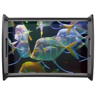 Kissing Fish Up Close And Personal Serving Tray