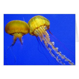 Kissing Jellyfish Card