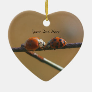 Kissing Ladybugs Cute Nature Ornament