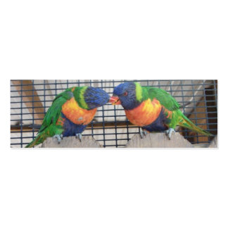 Kissing Lorikeets Business Cards