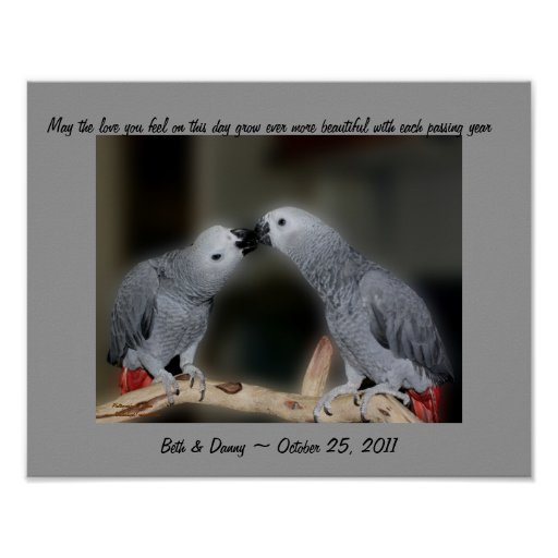 Kissing Parrots Cute Wedding Gift Poster