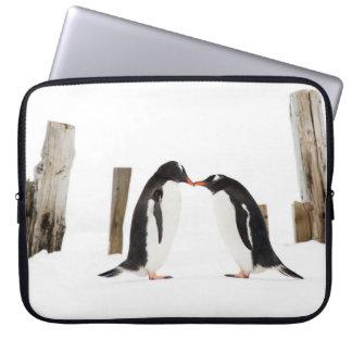 Kissing Penguins in Antarctica - Laptop case