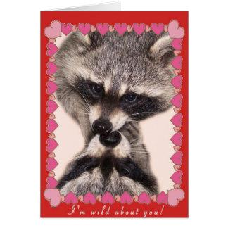 Kissing Raccoons Card