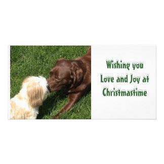 Kissing Shihtzu & Choc Lab Dogs Xmas Personalised Photo Card