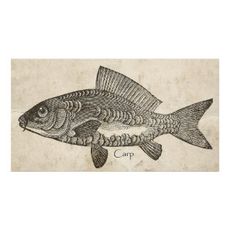 Kitchen Decor Wall Art Vintage Carp Koi Fish