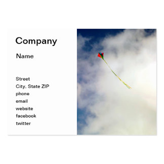 Kite Pack Of Chubby Business Cards
