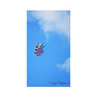 Kite I Gallery Wrap Canvas