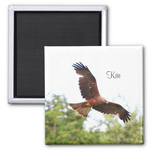Kite in flight..... refrigerator magnet