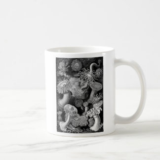 Kitsch Vintage Illustration Anemones Basic White Mug
