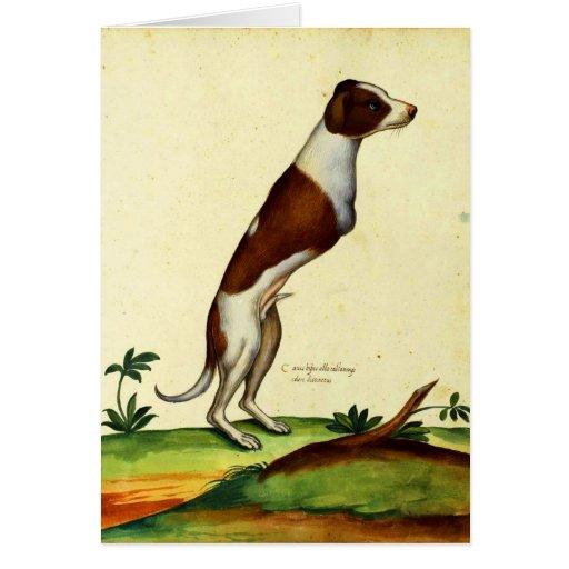 Kitsch Vintage Two Legged Dog Medieval Art Greeting Cards