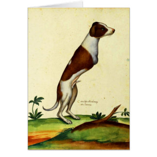 Kitsch Vintage Two Legged Dog Medieval Art Greeting Card