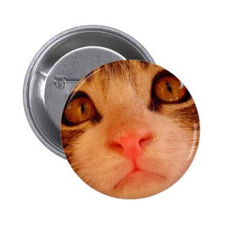 Kitten 6 Cm Round Badge