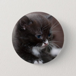 Kitten 6 Cm Round Badge