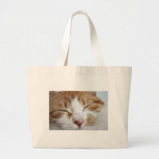 Kitten Afternoon Nap Photo Canvas Bag