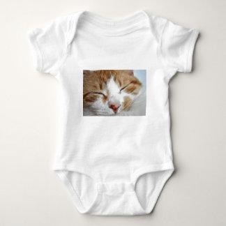 Kitten Afternoon Nap Photo T Shirt