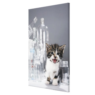Kitten amongst recycled bottles and jars canvas print