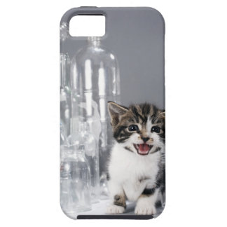 Kitten amongst recycled bottles and jars iPhone 5 case
