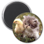 Kitten and Baby Chick 6 Cm Round Magnet