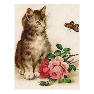 Kitten and Butterfly Postcard