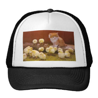 Kitten and Fluffy Chicks Cap