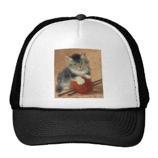 Kitten and muffler hat