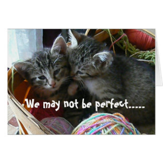 Kitten Anniversary Card