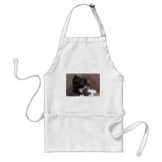 Kitten Apron