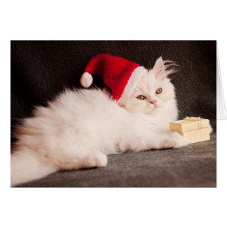 Kitten as Santa Card