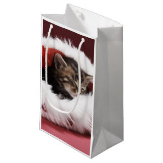 Kitten asleep in Christmas hat Small Gift Bag