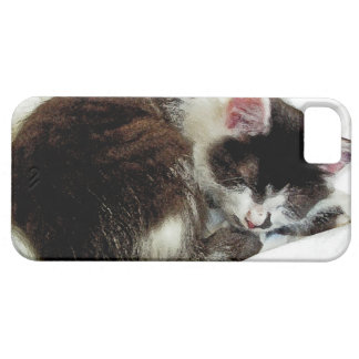 Kitten asleep on White Comforter Case For The iPhone 5
