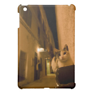Kitten at dusk, Morocco iPad Mini Cover