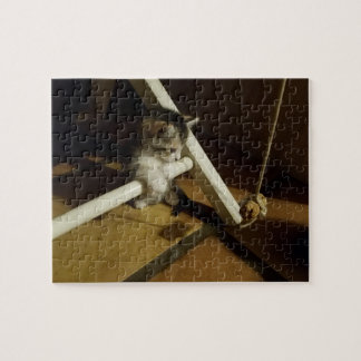 Kitten at Play #1 Jigsaw Puzzle