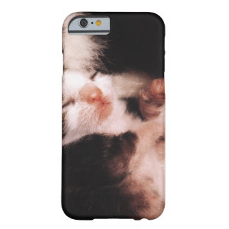 kitten barely there iPhone 6 case