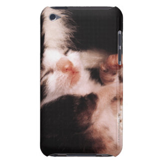 kitten barely there iPod cover
